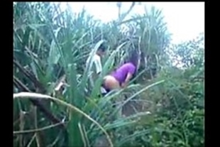 Pornography of a boy fucking a teen in the cane field